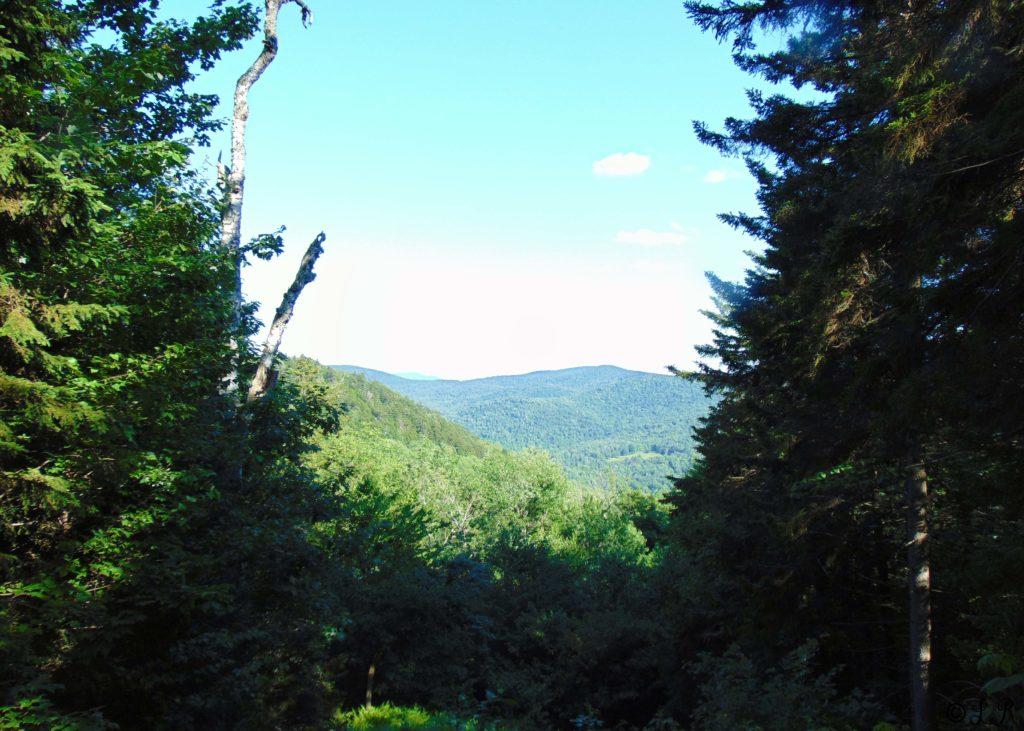 coolidge hike vermont summer
