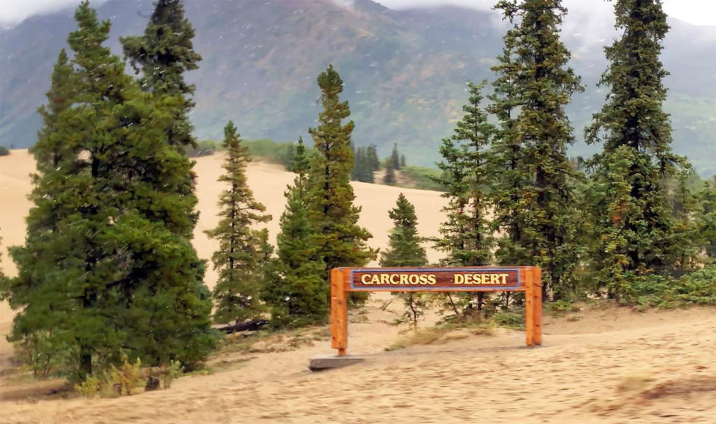 Carcross Desert / Yukon, Canada / Skagway, Alaska