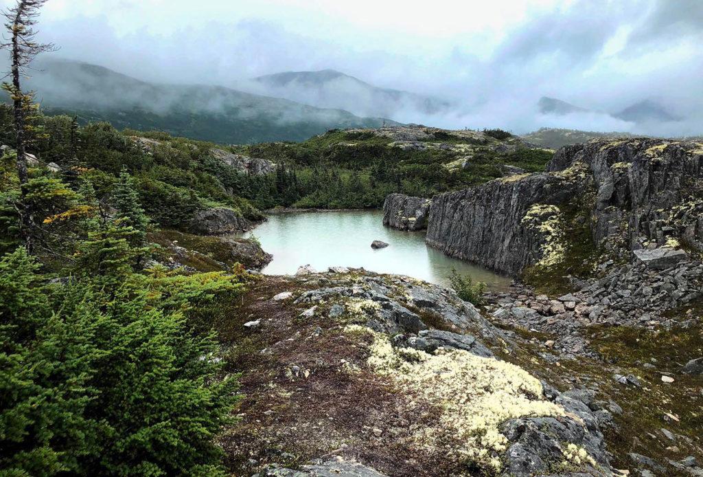 Tormented Valley / Yukon / Skagway / Alaska