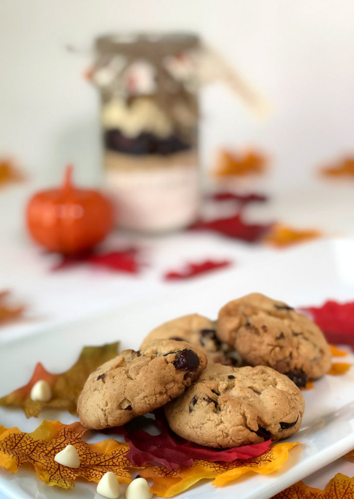 Cranberry Walnut Jar Cookies