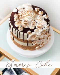 S'more s'mores cake with chocolate sponge, graham cracker crust, marshmallow buttercream, and a toasty light meringue.
